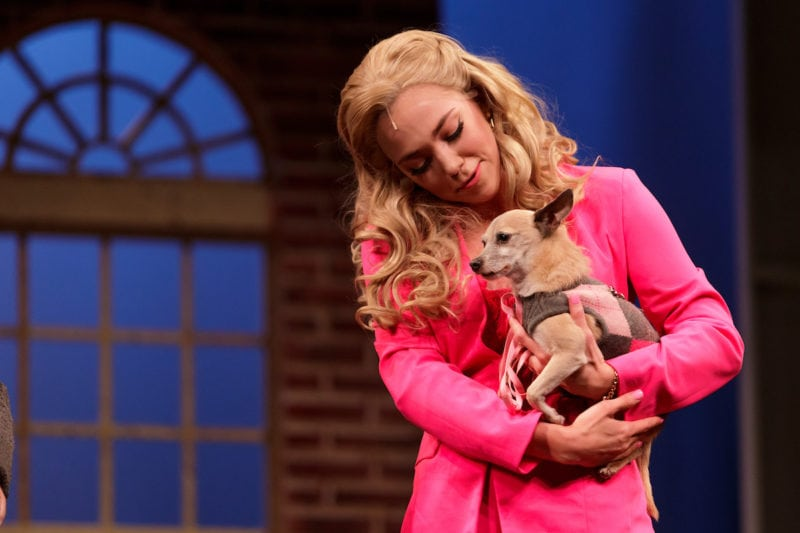 Lauren Hill stars as Elle Woods and holds Bruiser the dog